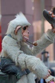Begegnung mit einem höflichen Affen. Foto: www.kehl-fotografie.de